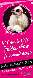 fashionshowsmalldogsatcrumbscafe