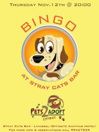 Pets2adopt Bingo Night - Limassol
