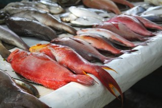 fish_market__kerala_by_northerneye-d30udz3